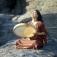 Sonntagskonzert im Klangraum-Kunigunde: Maryam Akhondy & Ensemble