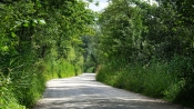 Ausflug zum Lenné-Park Blumberg
