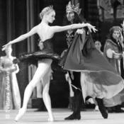 Schwanensee - Russisches Ballett
