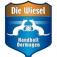 TSV Bayer Dormagen - TV Großwallstadt