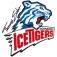 Thomas Sabo Ice Tigers - Krefeld Pinguine
