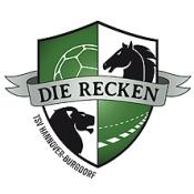 TSV Hannover-Burgdorf - HC Erlangen