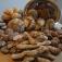 Brotbacken für Einsteiger