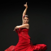 Flamenco - Feuer Andalusiens - Dinnershow
