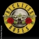Reckless Roses - Guns N Roses Tribute
