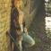 Sofia Talvik - Amerikanische Volksmusik mit Schwedischen Wurzeln