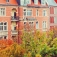 Genuss-tour Durch Charlottenburg