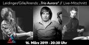 """Leidinger/Gille/Arends: """"Trio Aurora"""" // Live-Mitschnitt"""