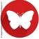 Die SchmetterlingsGameShow