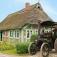 Traktorentreffen im Freilichtmuseum am Kiekeberg