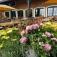Blumenzwiebel-Markt auf dem Krewelshof