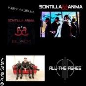 Scintilla Anima & All The Ashes