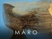 30. März 2019: Vernissage Und Konzert: Máro Und Musik Vom Aelius Trio