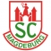SC Magdeburg - Rhein Neckar Löwen