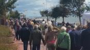 Wattenmeer Welterbe-Erlebnisfest mit Kunst- und Bauernmarkt