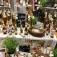 Kräuterführung: Kräuter entdecken auf dem Krewelshof
