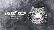 Velvet Vega Party