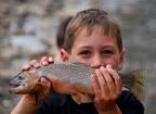 Keine Angst vor ganzen Fischen