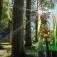 Borowski Sommerfest - Kunst In Park Und Galerie