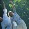 Hatha Yoga zum Neu-und Wiederentdecken