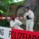 Strassenkrimi - der Mitmachkrimi in Bremen
