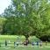 Yoga im Schlosspark Weinheim