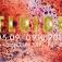 Ausstellung FLUIDE | crossart international