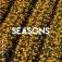 Seasons Kap. 4 mit Geistha & Tiger Milch