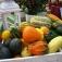 Herbstfest in der Lebenshilfe Gärtnerei