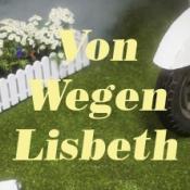 Von Wegen Lisbeth - Britz California Tour