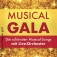 Musical-Gala - VIP Ticket