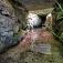Die Römische Wasserleitung von Vussem zur Kakushöhle