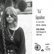 K.A. ( Keine Ahnung ) Exposition
