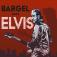 "Bargel sings Elvis ""Let The Good Times Roll!"""