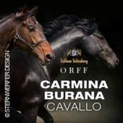 Carmina Burana Cavallo