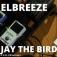 Elbreeze & Jay The Bird