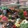 Herbst-Regionalmarkt Tübingen