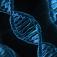 Herausforderungen und Gefahren der Integration von Genomdaten in die frühmittelalterliche Geschichte