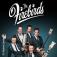 The Firebirds: Jukebox - die Rock n Roll Show