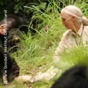 Jane Goodall - Talk am Tresen - Verhaltensforscherin von Schimpansen