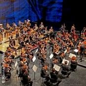junge dt-frz-ungarische philharmonie