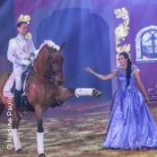 Christmas-On-Horse - Bailador
