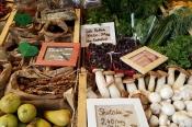 Bio-Wochenmarkt… und Regionales Eppendorf