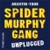 Spider Murphy Gang Unplugged