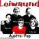Leiwaund - Austropop Live