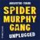 Spider Murphy Gang - Akustikkonzert 2020
