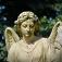 Köln Tip! Originelle Stadtführung Im Kölner Melaten Friedhof – Schandstätte Und Kult Friedhof