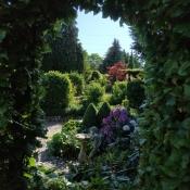 Fantasy-Nacht im Garten
