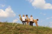 Impulstag in der Lama-Oase: Schau auf Dich!