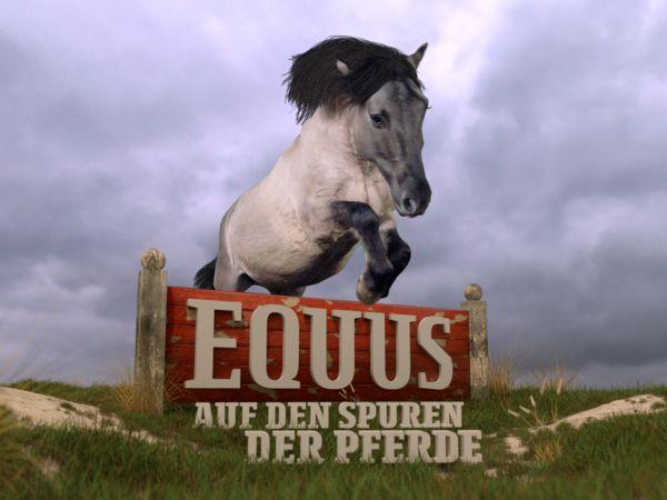 Equus - Auf den Spuren der Pferde